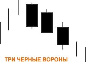 Три вороны черного цвета